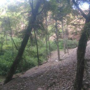 illegal dumping-barmu-village-shimla