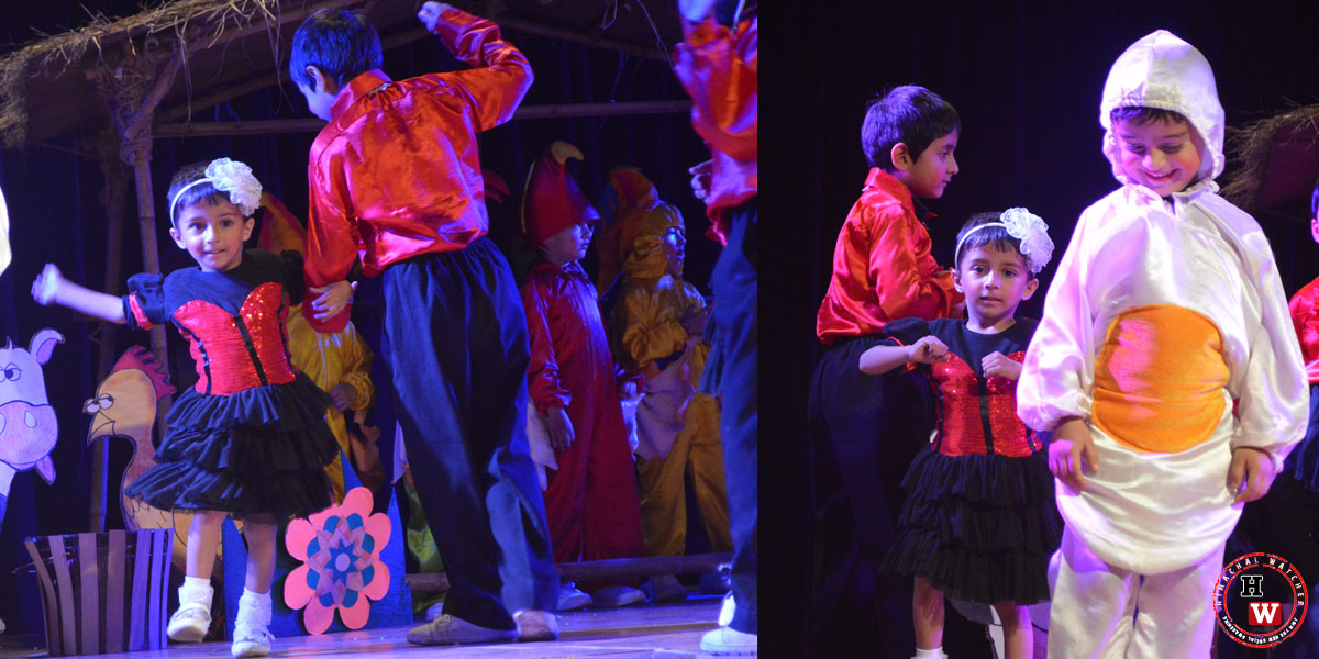 vivaan-thakur-auckland-school-boys-shimla