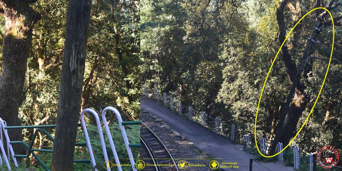railway-pull-balugang