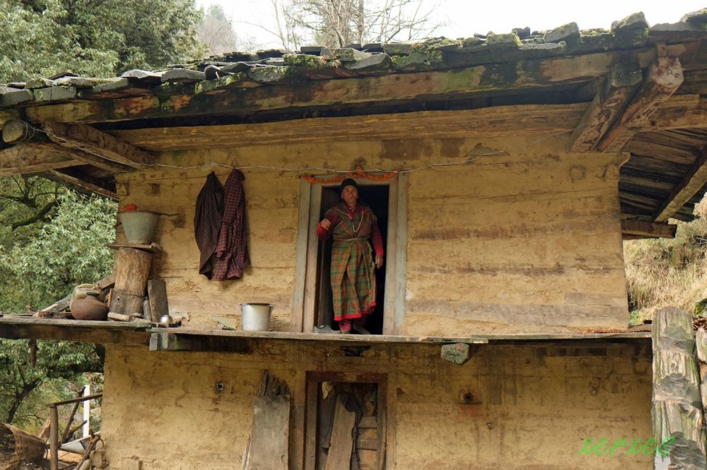 Woman lives along in forest