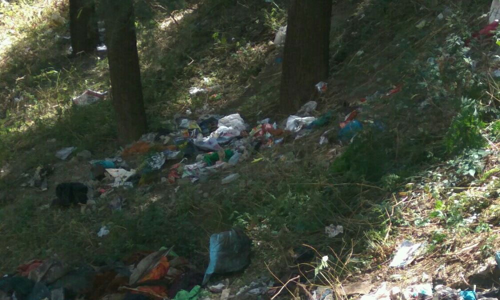 strawberry-hill-chotta-shimla-garbage