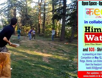 Watch: How (where) to play cricket in Shimla
