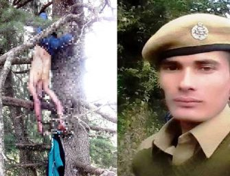 Dead body of forest guard found hanging from tree in Mandi, police suspects hand of forest mafia