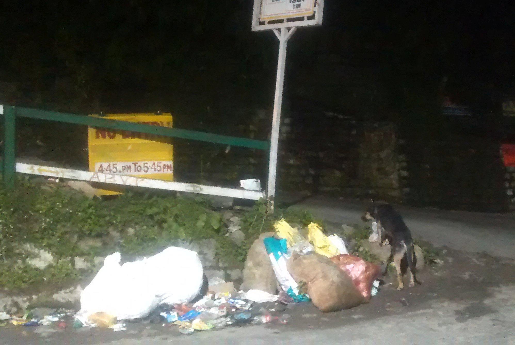 Garbage in panthaghati shimla