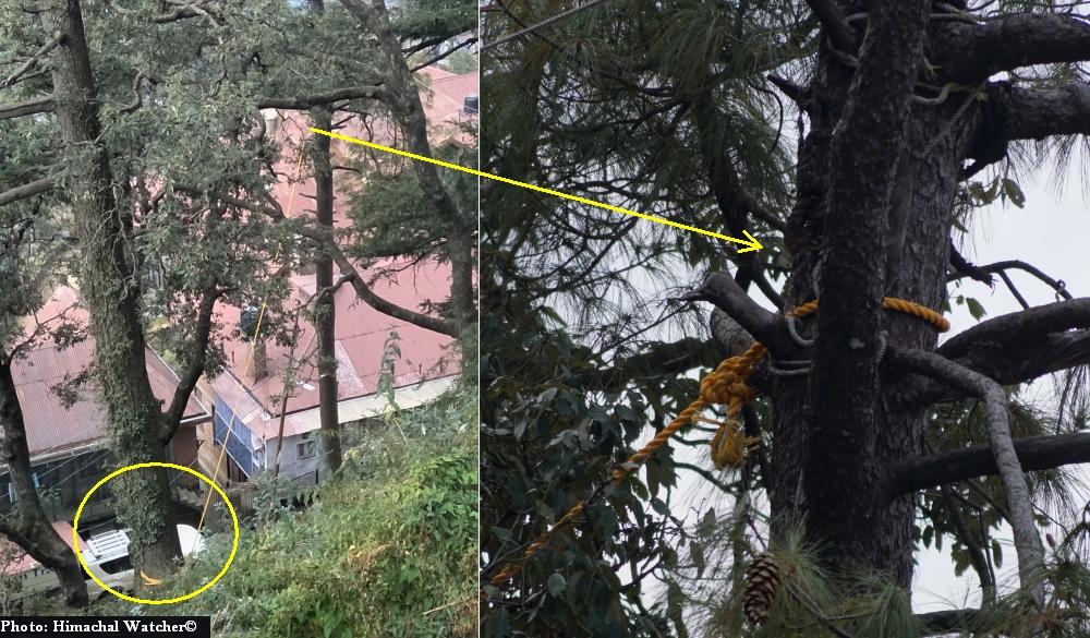 Risky Shimla localities