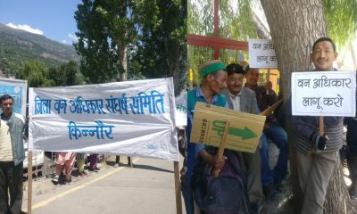 Kinnaur protest against eviction from forest land