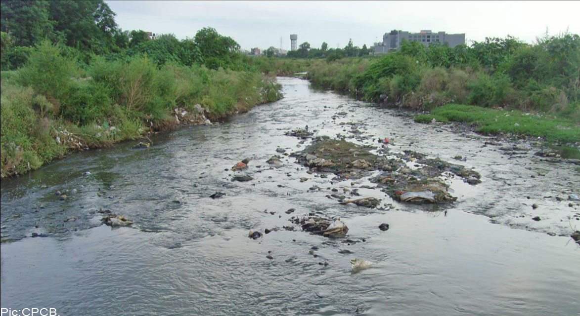 stf for ghaggar river pollution
