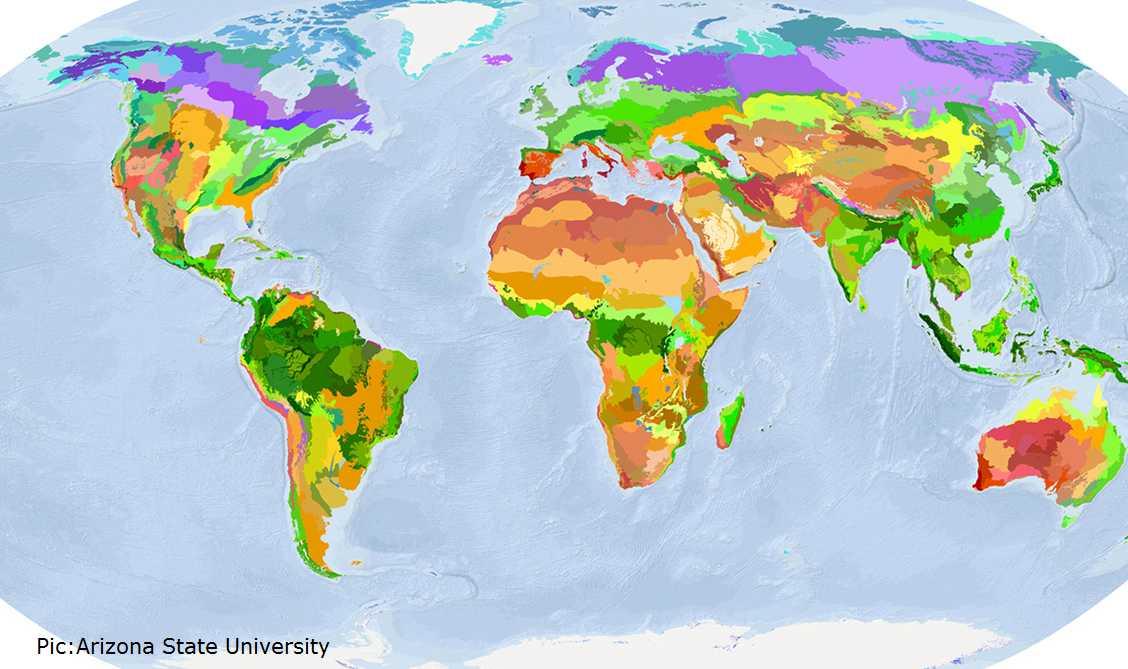 Cost of saving biodiversity on earth