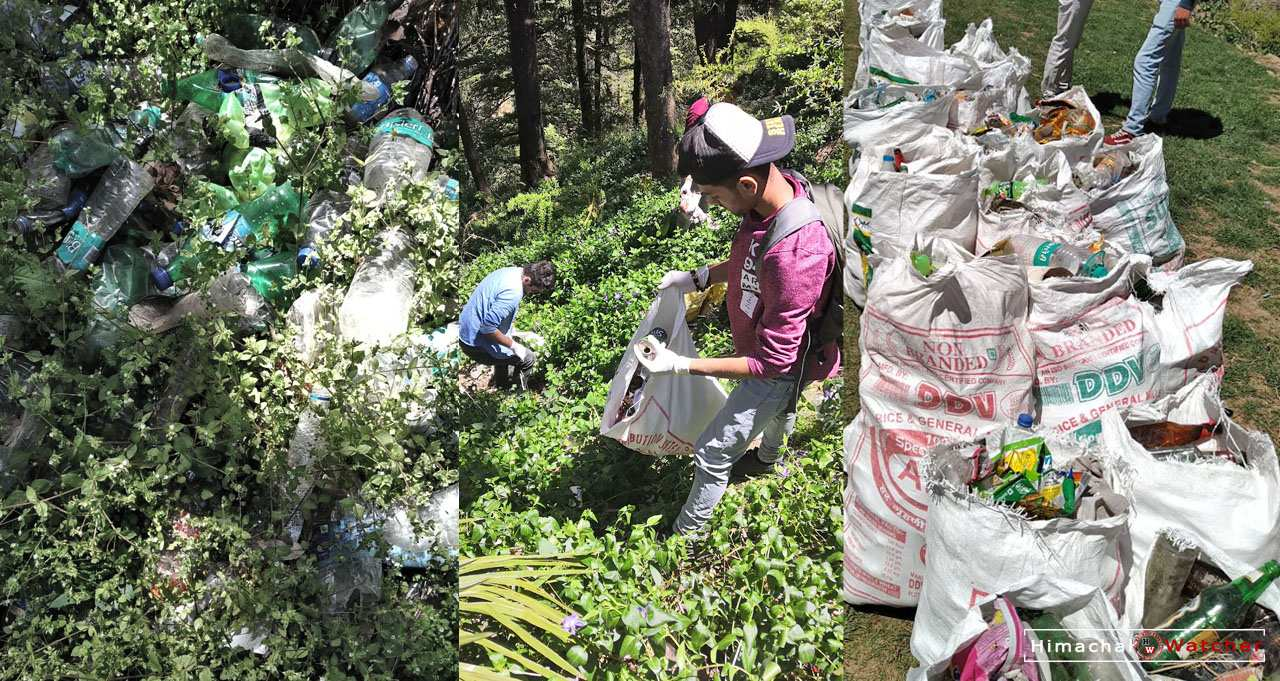 Trek A Tribe Cleanliness Driver in Shimla