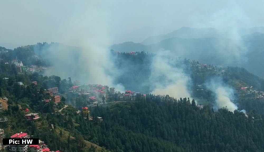 Forest Fires in Himachal Pradesh in 2019