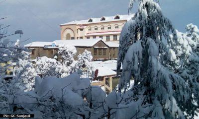 Sanjauli College Website