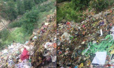 Giri Ganga River pollution in Shimla