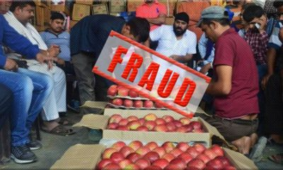 Fraud with Himachal Apple Growers