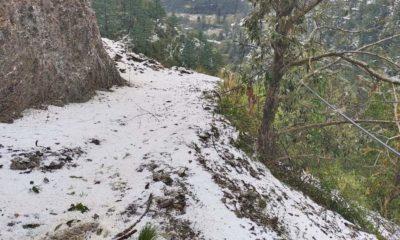 Snowfall in kullu manali