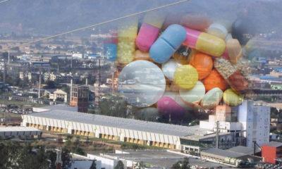 Bulk drug park in himachal pradesh