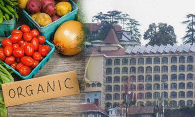 Organic Vegetable shop at hp secretiat