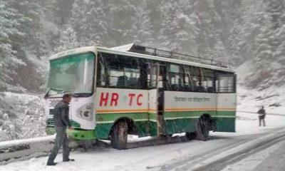 Snowfall in Shimla and Manali 2019