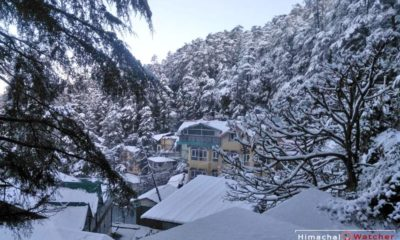 Snowfall in Shimla on December 31, 2019