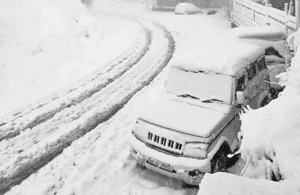 Snowfall-shimla-2020