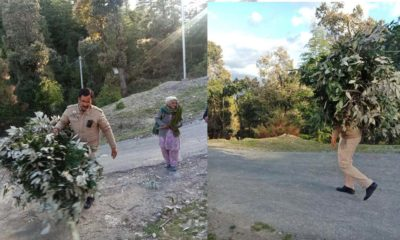 Policeman in Chail solan helping elderly during curfew