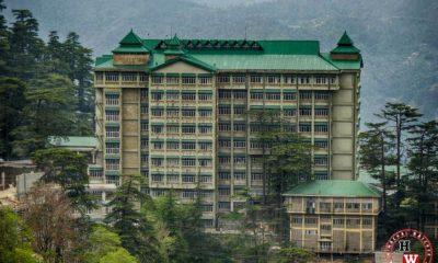 Himachal PRadesh Patwari Recruitment Cleared by High Court