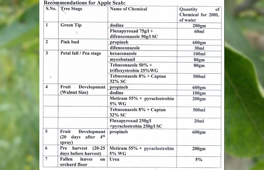Apple scab Chemicals sprays