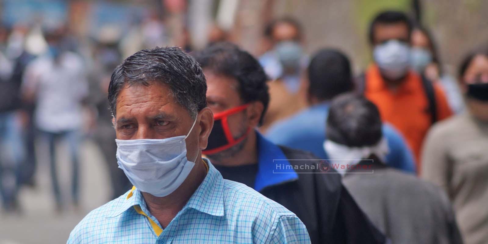 Shimla-covid-19 cases