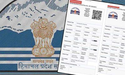 Fake e-covid pass himachal pradesh government