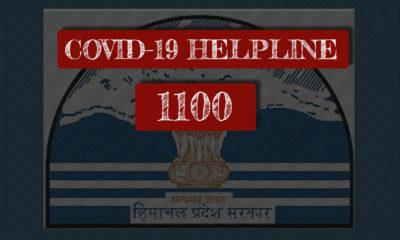 hP Govt COVID-19 helpline