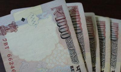 shimla private schools fees